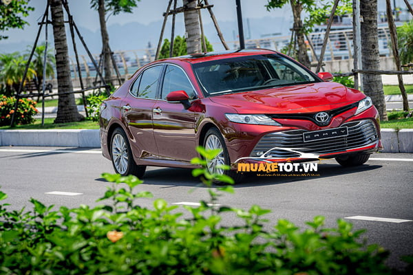 toyota camry 2.5Q anh 15